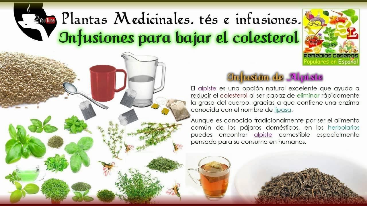 infusiones para bajar el colesterol remedios naturales