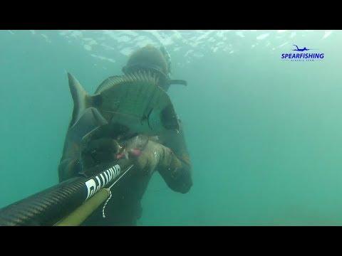 Redon Gjermeni - Peshkim korrik. Apnea Albania  Spearfishing Pesca sub chasse sous marine