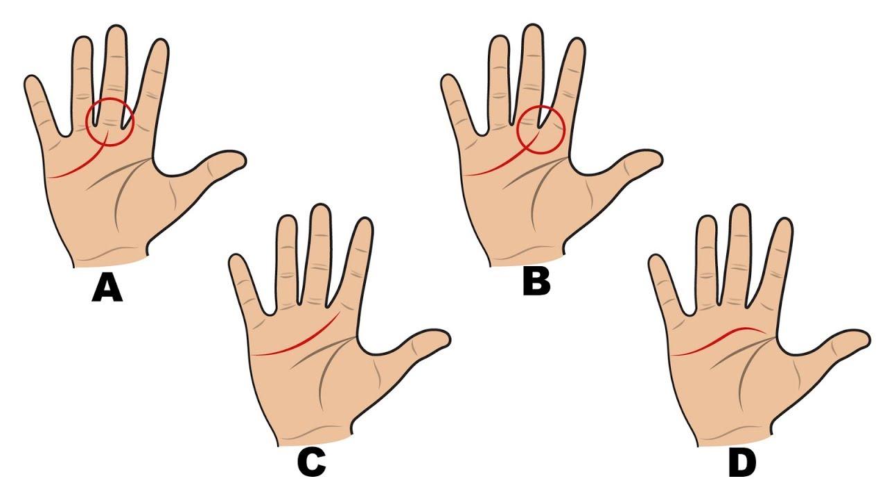 Download Voici ce que les lignes de vos mains révèlent sur votre personnalité.