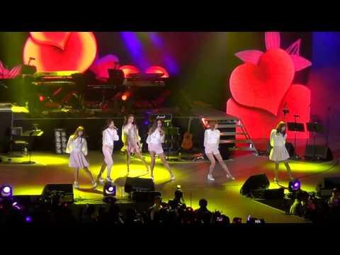 Korea Times Music Festival 2015 - Apink (에이핑크)