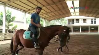 Belajar Keseimbangan Lewat Berkuda Hobi eps Berkuda bagian 1