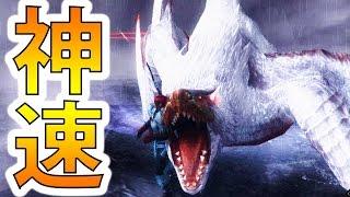 【MHF-Z実況】『極み駆けるナルガクルガ』が速すぎて見えないw【初見】【モンハンフロンティアZ】 thumbnail
