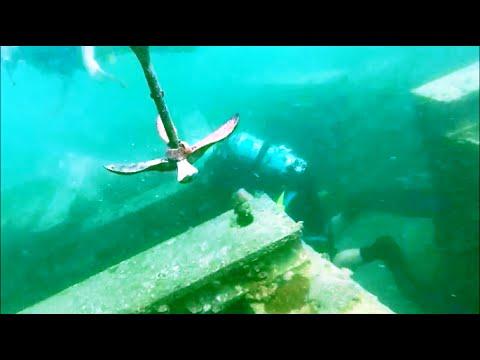 Diving Ras Ghorab Blocks-1, Abu-Dhabi, 7/7/2016