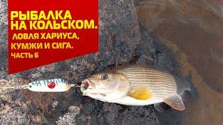Рыбалка на Кольском. Ловля хариуса, кумжи и сига. Часть 6(Подписывайтесь на наш канал - https://www.youtube.com/user/RybolovNN?sub_confirmation=1 Рыбалка на Кольском. Ловля хариуса, кумжи и..., 2015-10-30T15:48:27.000Z)