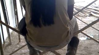 Download Video anak legung ngentot di melaka malaysia MP3 3GP MP4