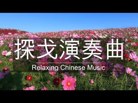 非常好聽👍探戈演奏曲🎶經典懷舊老歌聽出好心情💕早上最適合聽的 探戈老歌 輕音樂 放鬆解壓 Relaxing Chinese Music | Hit English Song |Mp3 Song Download | Full Song