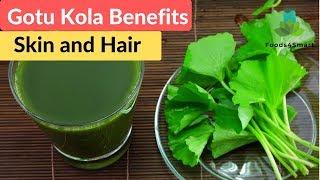 Gotu Kola Benefits for Skin and Hair   Gotu Kola Health Benefits   Healthyfoods4life
