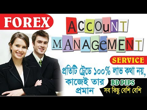 Forex account manager job