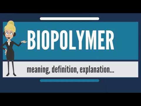 What is BIOPOLYMER? What does BIOPOLYMERmean? BIOPOLYMER meaning, definition & explanation