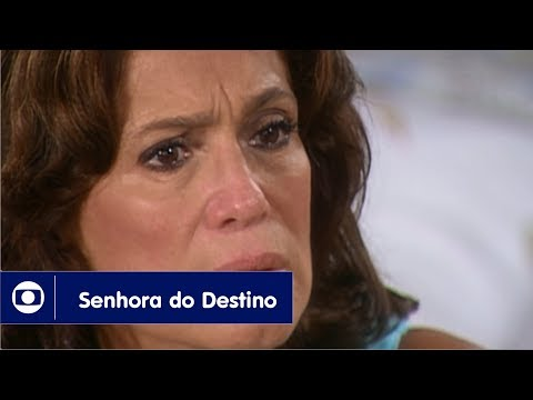 Senhora do Destino: capítulo 137 da novela, quinta, 21 de setembro, na Globo