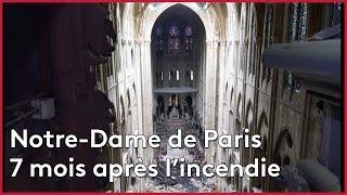 Ces œuvres ont survécu à l'incendie de Notre-Dame !
