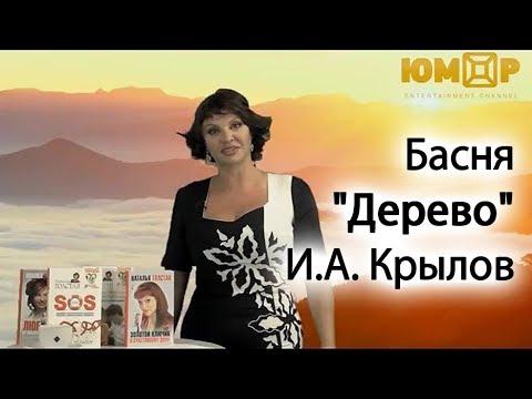 """Басня """"Дерево""""// И.А. Крылов"""