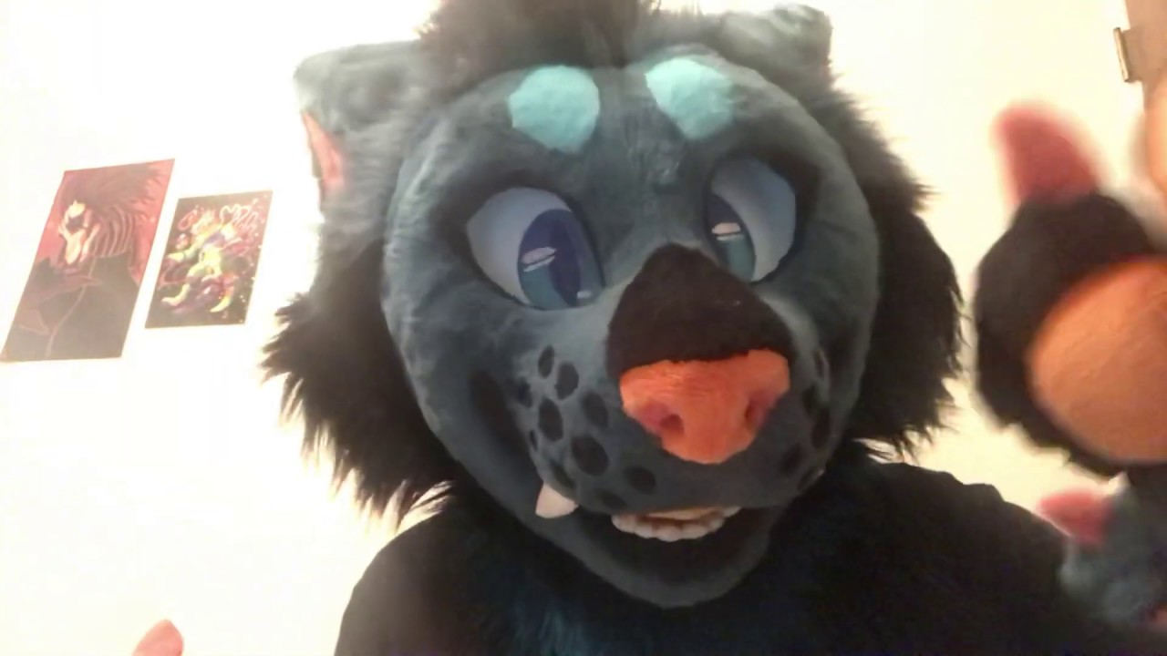 These furry pictures [ASMR] - YouTube