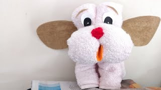 How To Do Towel Animals | Step By Step Towel Folding Guides