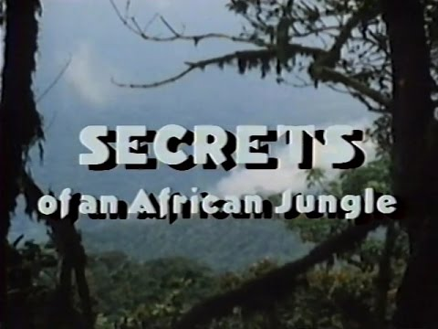 Secrets of an African Jungle (1986)