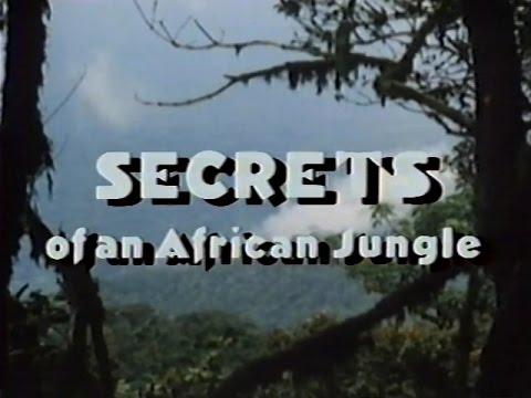 Secrets of an African Jungle [1986]