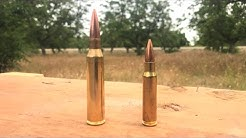 338 LAPUA VS 308 savage ba110