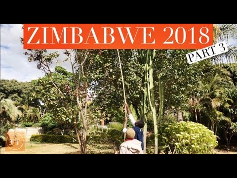 GOODBYE ZIMBABWE! | Travel Twinstas