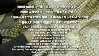 醤油の作り方 How to make soy sauce at home.