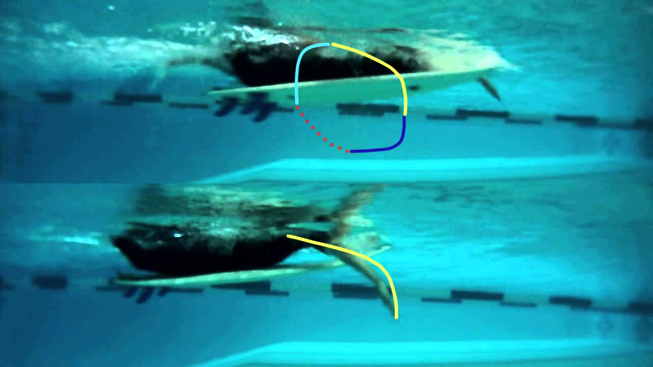 Surfing Paddling Technique - two different types of strokes to use when paddling a surfboard