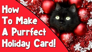 How To Make The Perfect Pet Holiday Card
