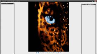 Speedart Avatar/Leopard  Wallpaper + Download [HD]