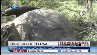 A rhino is killed in Lewa by poachers