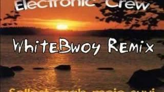 Electronic Crew - Sellest Saab Meie Suvi (WhiteBwoy Remix)