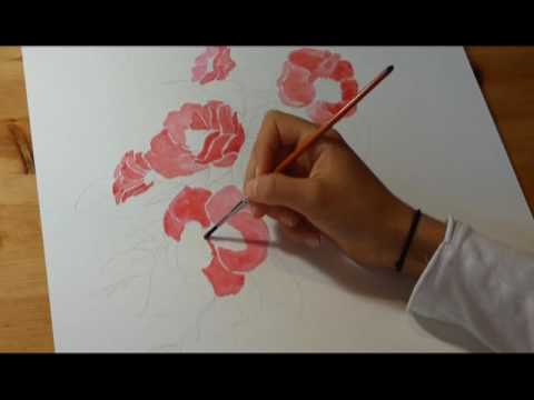 Aquarelle Camelia Youtube