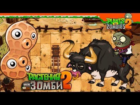🥜 СУПЕР АРАХИС И РОДЕО С БЫКАМИ 🤠🐂 Plants Vs Zombies 2 (Растения против Зомби 2) Прохождение