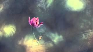 Leo Abrahams - ultra romantic parallel universe (feat. Phoebe Legere)