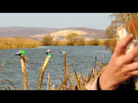 ЛОВЛЯ КРУПНОЙ РЫБЫ НА РЕЗИНКУ! Рыбалка Осенью с Ночевкой.