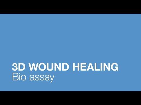 3D Wound Healing Bio Assay