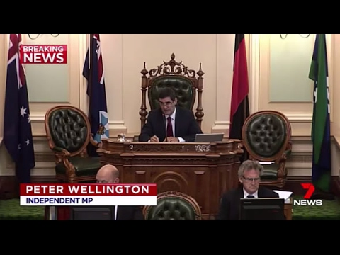 Qld Independent Speaker Peter Wellington announces retirement from politics at next election
