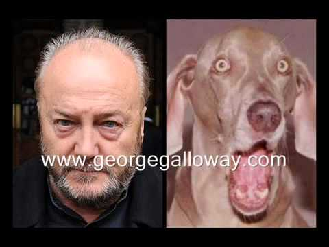 George Galloway vs The Kennel Club