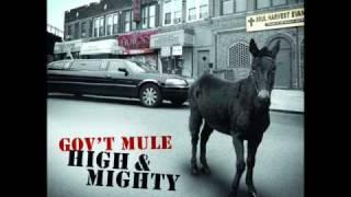Gov`t mule   so weak so strong