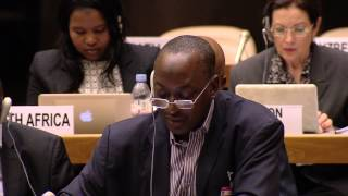 Nigeria: Statement made at the Preparatory Committee of the Third UN World Conference on DRR