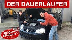 JA zum Diesel? | Der Wohl Beste VW Motor Aller Zeiten ! | 1.9 TDI Kaufberatung