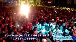LOS CAMINANTES - DOS CARTAS Y UNA FLOR - FERIA TEPATLAXCO 2014
