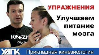 Упражнения ДЛЯ улучшения Кровоснабжения мозга. КИНЕЗИОТЕРАПИЯ. 2 простых упраженения.