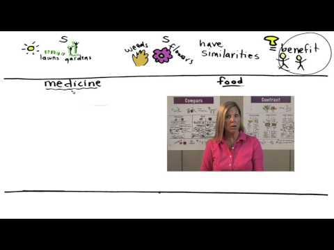 4-6 Writing Informative/Explanatory Stage 11 Compare