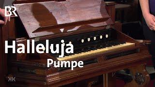 Halleluja-Pumpe für Pioniere: Harmonium | Kunst + Krempel
