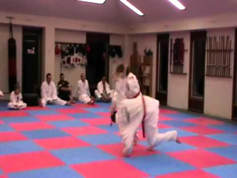 Hapkido Walking Stick Self Defence Techniques