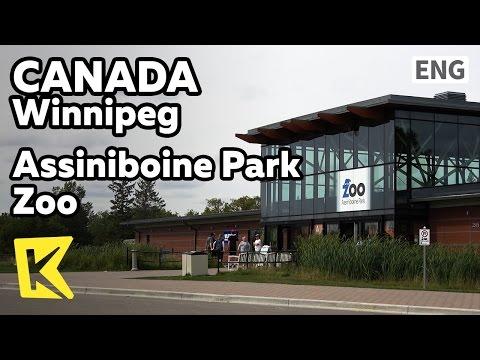 【K】Canada Travel-Winnipeg[캐나다 여행-위니펙]아시니보인 공원 동물원/Assiniboine Park/Zoo/Aquarium/Canada goose