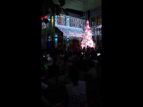 Bảo Thy-Ngốc nghếch (live)