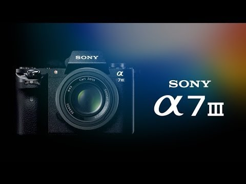 Sony A7iii RAW Files In Lightroom A Must Watch Before Buying