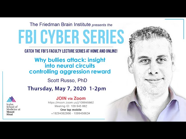 FBI Cyber Series - Why bullies attack: insight into neural circuits  controlling aggression reward