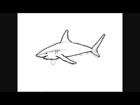 Dibujar tiburones - Dibujos para Pintar - YouTube