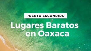 Lugares baratos en Puerto Escondido, Oaxaca || Voluntariado #8