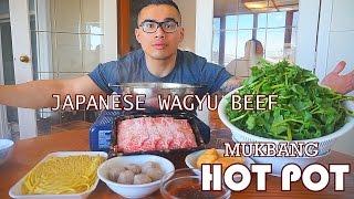 WAGYU BEEF HOT POT | MUKBANG | QT